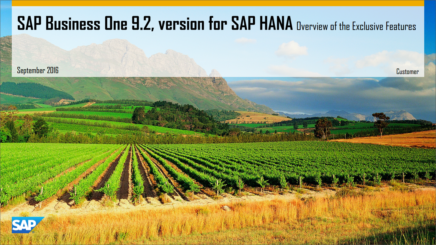 SAP Business One 9.2, version for SAP HANA Exclusive Features