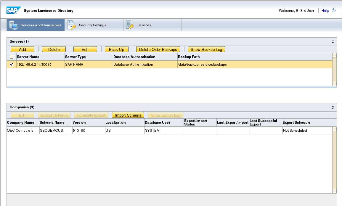 SAP Business One on Hana database Backup and Restore