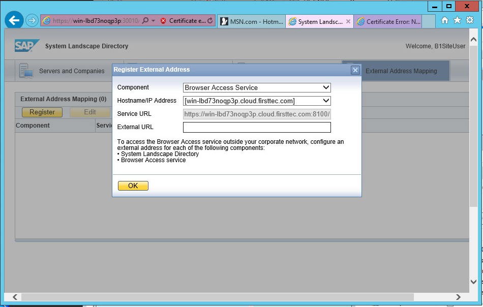 SAP Business One Browser Access public address mapping
