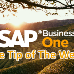 SAP Business One Tip